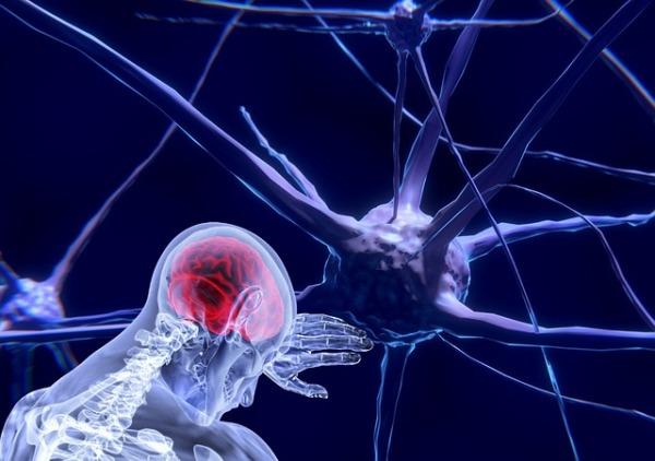 ENFERMEDADES NEURONALES